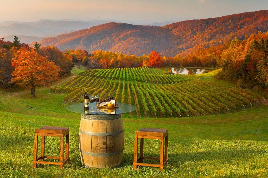 Burntshirt Vineyards Romantic Date By The Grape Vines Hendersonville